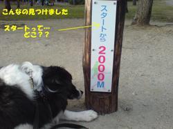 20080224170515a