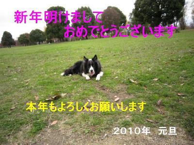 Img_0992201011