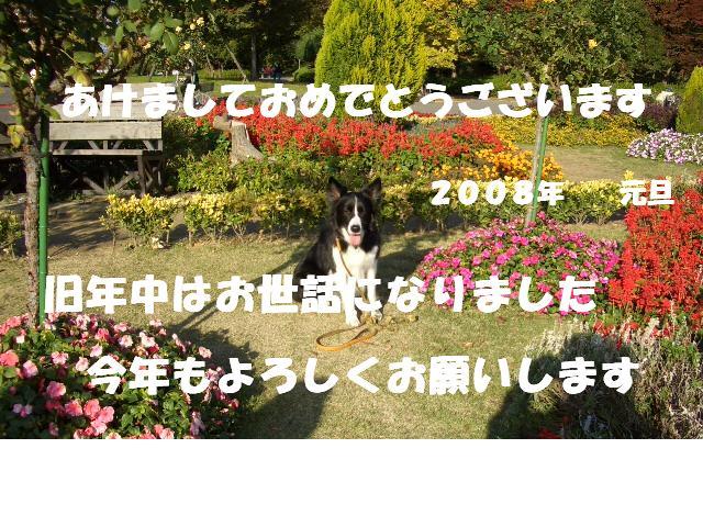 2005_1120ryokuti0045200811